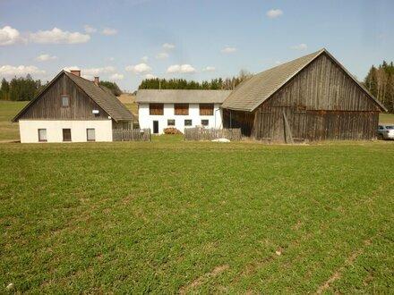 Bauernhof in Streusiedlungslage