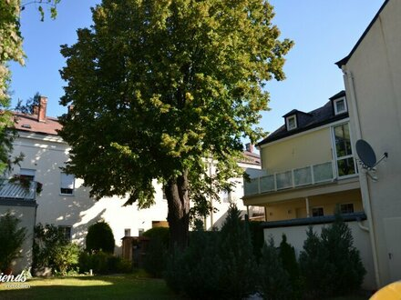 Zentral in Bad Vöslau - 2 Zimmer