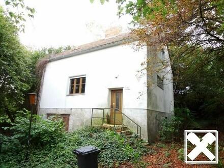 ALLEINLAGE*** Renovierungsbedürftiges Häuschen auf großem Grund!
