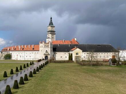 Luxus pur nebst unglaublicher Aussicht auf das Schloss von Wallsee - voll ausgestattet!