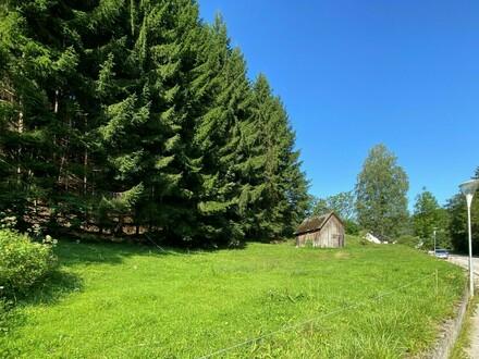 Grundstück für Hausbau oder auch als Anlage im Waidhofner Stadteil Wirts