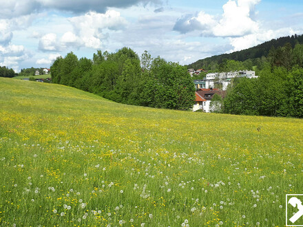 Familienfreundliche 4-Zimmer-Mietwohnung in Hallwang-Esch