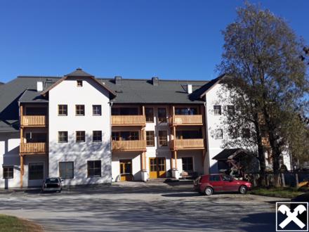 Geförderte 1-Zimmer-Wohnung in Mauterndorf