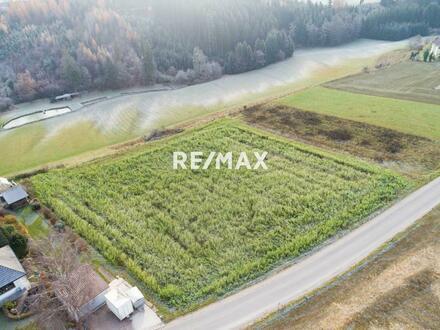 Landwirtschaftliche Nutzfläche - Verkauf mit DAVE im offenen Verfahren