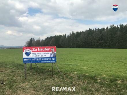 TOP-Betriebsbau-Grundstück an B129 in Waizenkirchen