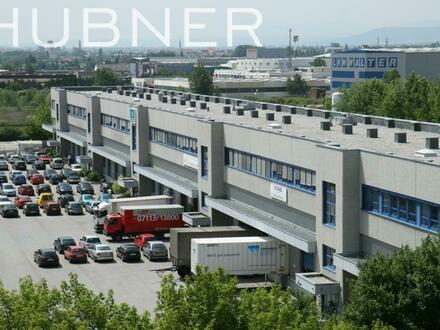BÜRO & LAGER an der südlichen Wiener Stadtgrenze
