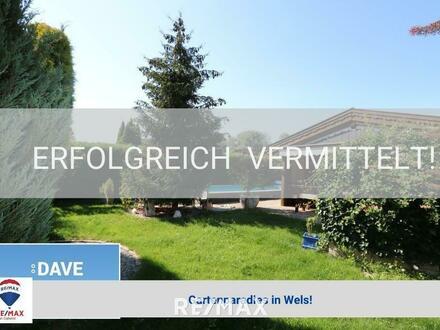 Mein Gartenparadies in Wels!