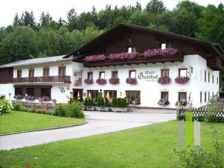 Uriges Gasthaus in schöner Naturlage mit Gästezimmern