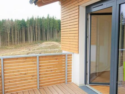 3 Zimmerwohnung mit Balkon