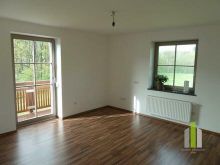 Sehr schöne 2-Zimmer-Wohnung mit Balkon in Hallwang