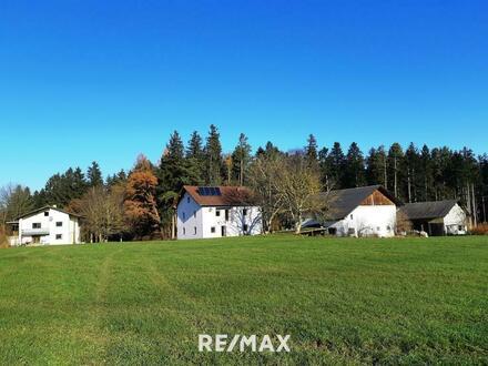 Landwirtschaftliches Anwesen in ruhiger Alleinlage