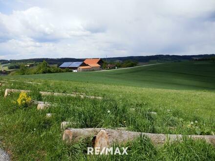 Neuer Preis! Ackerland mit angrenzendem Nadelwald
