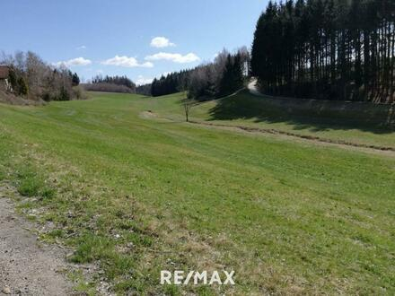 Baugrundstück mit Grünland Nähe Passau zu verkaufen