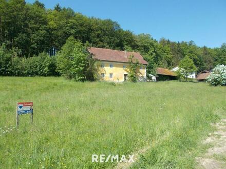 Baugrundstück in Waldrandlage (Lindetwald)