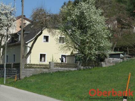 Sanierungsbedürftiges Haus in Siedlungsrandlage