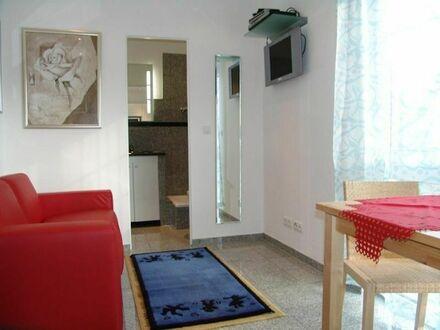 Großartiges, wunderschönes Apartment im Herzen von Flörsheim | Perfect, quiet studio in Flörsheim