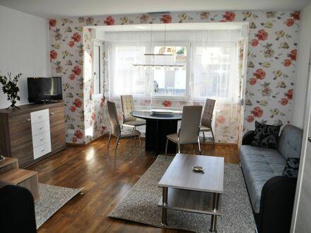 Wohnung, Rheinhessen, möbliert, 2 ZKBD, Waschmaschine, Garten, Hof mit Parkmöglichkeit | Apartment, Rheinhessen, furnished,…