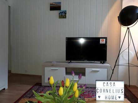 Casa cornelius, city 10 min, nature 10 seconds | Fantastic suite in Trier best for Lux Epacts