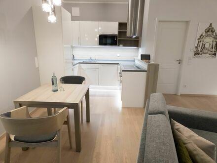 Studio Apartment, modern, hochwertig, im Zentrum von Dresden | Studio Apartment, modern, high-quality, in the center of Dresden…