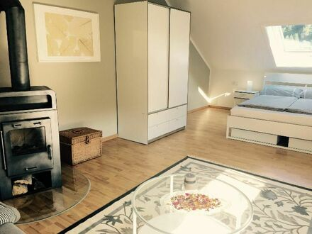 Schickes 3 Raum Apartment mit Kaminofen | Lovely 3 room apartment with your own fireplace