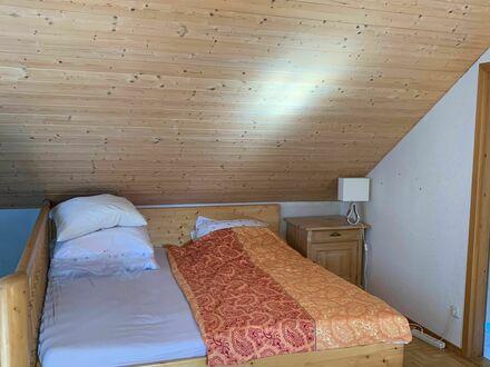 Loft Wohnung mit Wintergarten und Garten zu vermieten | Loft apartment with garden for rent