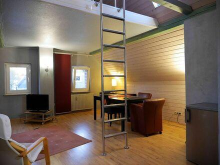 Moderne Dachgeschoß-Wohnung mit guter Verkehrsanbindung | Modern top floor apartment with good transport connections