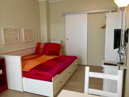 Wunderschönes und ruhiges Studio-Apartment mit Terrasse und Stellplatz | Pretty apartment in Leipzig