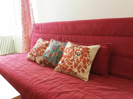 möblierte, neuwertige 2-Zimmer-Wohnung mit EBK in der Altstadt Heidelberg | Cozy and comfortable 2 rooms apartemnt in the…