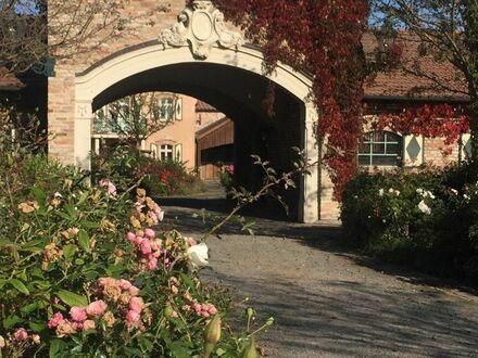 Liebevoll eingerichtete Wohnung auf einem Gestüt in Beelitz | Bright & beautiful apartment in Beelitz