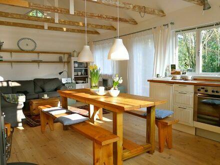 Haus mit eigenem Garten, 2 Terrassen, Kamin, sehr viel Gemütlichkeit - und ganz viel Vorfreude auf Besucher | House with…