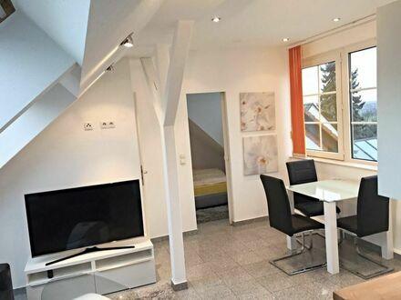 Fantastisches Studio Apartment im Zentrum von Flörsheim | Beautiful suite in Flörsheim