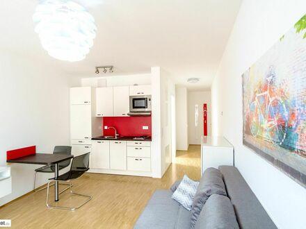 Studio Apartment Nr. 17 in bester Dresdner Neustadt-Lage gelegen   Studio Apartment Nr. 17 in best Dresden Neustadt location
