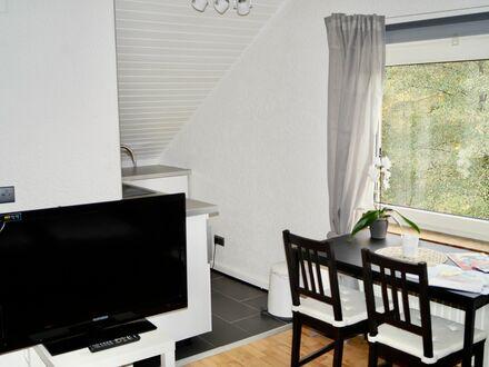 Gemütliches Studio Apartment in Kaiserslautern | Perfect, cozy studio in Kaiserslautern