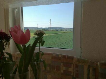 Schönes Apartment mit sonnigen Balkon in Ditzingen | Nice apartment with sunny balcony in Ditzingen