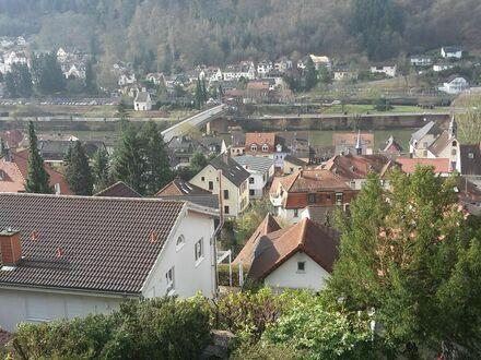 Sehr schöne, sonnige, vollmöblierte1,5-Zi-Einliegerwohnung mit Garten, Terrasse und Neckarblick   Perfect & cozy flat in…