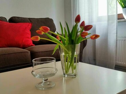Schickes Studio Apartment in Top-Lage | Amazing flat - great view!