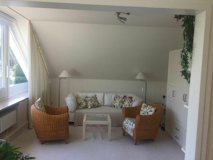 Modische und charmante Wohnung   Neat & perfect studio