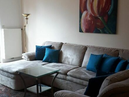 Großzügige Wohnung in ruhiger Umgebung   spacious apartment in a quiet but convenient location