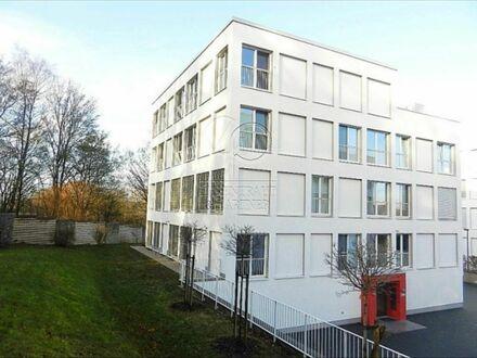Feinstes & wundervolles Apartment mitten in Wolfsburg und am Stadtwald | Amazing, cozy studio in Wolfsburg and next to…
