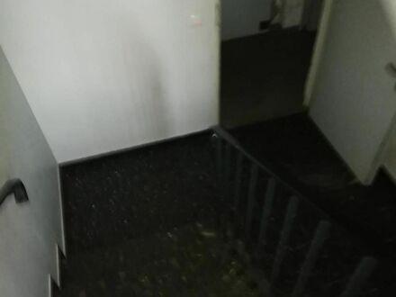 Sehr gepflegte, wunderschöne 3 Zimmer Wohnung in Bremen | Beautiful and modern 3bed room apartment (Bremen)