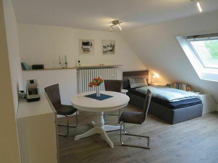 Moderne, ruhige 1 Zi Dachgeschosswohnung (nur Nichtraucher)   Modern and quiet 1 room apartment (only non smokers)