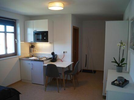 lichtdurchflutetes modernes Apartment | Neat and nice loft in Dresden
