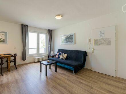 Wundervolles & helles Studio Apartment in Schöneberg | Bright and cozy flat in Schöneberg