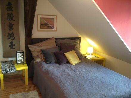 Feinste, häusliche Wohnung auf Zeit (Görlitz)   Bright, cute loft in Görlitz