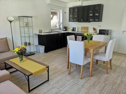 Neu sanierte Wohnung mit kompletter Ausstattung und wunderbarem Ausblick an der deutschen Weinstraße   Newly refurbishe…