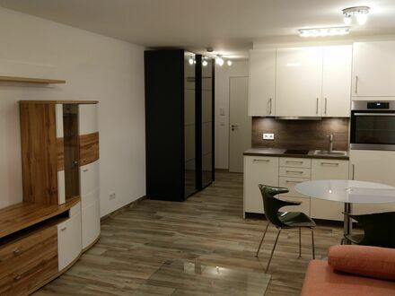 Hochwertig möbliertes 1-Raum-App. mit TG, Neubau Erstbezug // absolut ruhig gelegen nach hinten raus | High quality furnished…