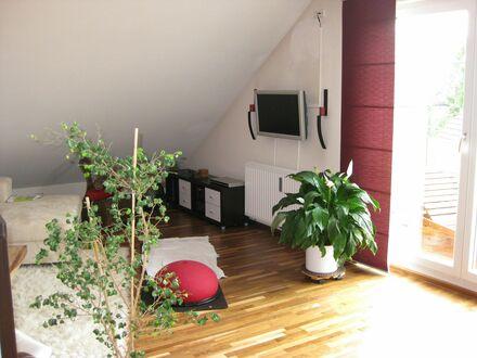 Neues, großartiges Apartment in München | Great & lovely flat (München)