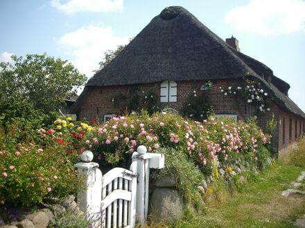 Neues und wunderschönes Zuhause mit schöner Aussicht | Lovely and quiet loft conveniently located