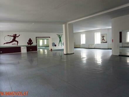 *SPORTHALLEN oder LAGERHALLEN 470 m2 und 440 m2*
