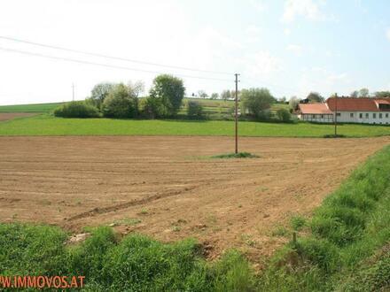 !!Kemeten/Südburgenland: 3000m²-Baugrundstück in ruhiger Seitenstraße